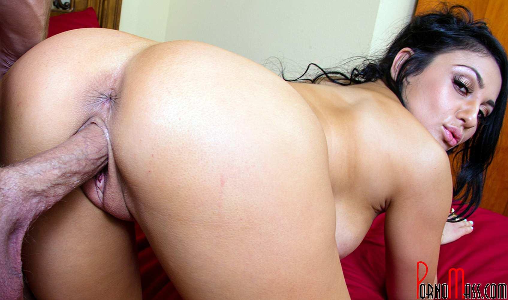 porno chicas toro porn